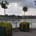 Куда пропали клёны на набережной Волги у Речного?