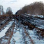 Деревня Воропуни отрезана от остального мира непроходимой уничтоженной дорогой
