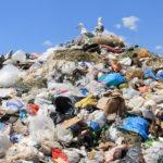 Тверская область вошла в шестёрку самых мусорных регионов