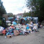 Посёлок Новозавидовский завалило мусором