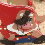 Детские площадки в Мигалово и на городском пляже в Твери опасны для здоровья!