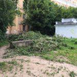 «Молодогвардейцев» обругали за показушный субботник на улице Вагжанова