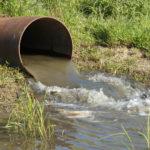 Очередная экологическая катастрофа в Максатихе
