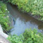 В Твери подтвердился факт сброса канализационных стоков в ручей Химинститута