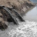 МУП «ЖЭК» обвинили в сбросе сточных вод в Волгу