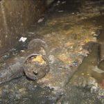 В Осташкове общежитие тонет в холодной воде, УК не реагирует