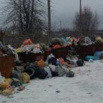 Посёлок Рязаново после Нового года завалило мусором