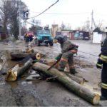 В Тверской области после урагана люди третьи сутки сидят без света