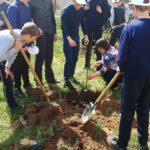 В Тверской области неизвестные украли яблони, которые накануне Дня Победы высадили дети