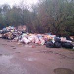 В Торжке перестали убирать мусор, помойка выросла на улице Кожевников