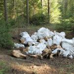 На ферме в Тверской области массово дохнут животные, жители боятся эпидемий и бьют тревогу