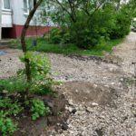 Разруха тверских дворов: кто будет хоть что-то делать?