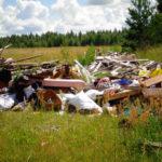 В Тверской области нашли город, который просто заваливает мусором