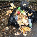 Тверь готовится утонуть в мусоре: полигон под Тверью с 1 августа перестанет принимать отходы