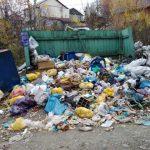 Ржев выйдет на митинг против грядущего мусорного коллапса