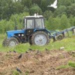 Единственный оставшийся колхоз в Сонковском районе Тверской области перестал платить деньги сотрудникам
