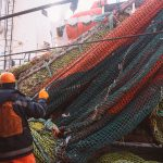 Для АО «ДМП-РМ» пытаются создать «экслюзивные» условия в рыболовном бизнесе
