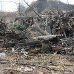 Олег Дубов «пропиарился», но мусор в Оленино не убрал