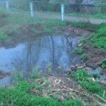 Чёрная зловонная жижа заливает реку Цна в Вышнем Волочке
