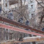 Жители нижних этажей будут платить за тепло больше. Правительство РФ придумало новый способ отъема денег у населения