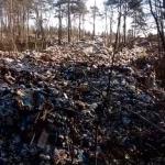 Гигантская свалка рядом со стратегическими ракетами: жители ЗАТО Озерный просят Путина спасти их от возможной катастрофы