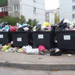 Платить за мусор теперь придётся по числу контейнеров? Федеральная власть обсуждает новый расчёт  оплаты за вывоз ТКО