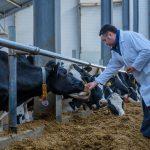 Будни сельского хозяйства Тверской области: в 2018 году господдержка сельхозпроизводителей рухнула вдвое