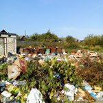 За утилизацию мусора в Тверской области будет отвечать москвич