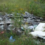 Оленинский район: там, где росли грибы, теперь растут мусорные кучи