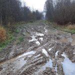 «Фронтовые» дороги Ржевского района. Дом узницы фашистских лагерей фактически отрезан от мира