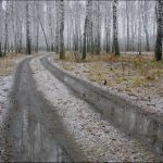 В Тверскую область возвращается дождливая осень