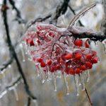 К воскресенью подморозит. Погода в Тверской области