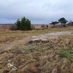 Селигер – для всех! Многодетным семьям в Осташкове удалось спасти  от захвата прибрежную зону