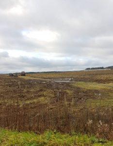 Племзавод «Заволжский» сливает навоз на поля? Жители окрестностей страдают от нестерпимой вони