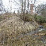 В Западной Двине бесхозная канализация течет в реку на фоне полного разгрома. Тверской футуризм XXI века