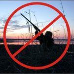 Тверская область стала первым регионом в РФ, где запретили весеннюю охоту в связи с коронавирусом. Реакция охотников