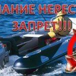 Вниманию рыболовов-любителей! Нерестовый запрет на рыбалку — Тверская область