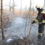 Не заболеем, так сгорим? 58 пожаров за сутки: в первомайские выходные в регионе возросло количество возгораний сухой травы
