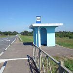 Отмена автобуса больно ударила по людям: жители Ржевского и Зубцовского районов борются за восстановление межрегиональных маршрутов