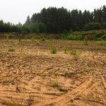 В Удомле предприимчивый гражданин на поле устроил карьер по добыче песка