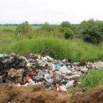 Свалка на свалке: Ржевский район зарастает мусором, местные власти отказываются его вывозить