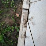 Очередная жертва тверского благоустройства — сквер у роддома в Южном