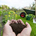 Восстанавливаем плодородие почвы после дачного сезона