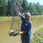 «Я реализовал свою мечту и поэтому счастлив». Фермер-новатор из Конаковского района Геннадий Садыков теперь выращивает не только картошку, но и рыбу
