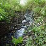 В Западной Двине канализация продолжает течь в реку. Пока чиновники только обещают навести порядок…