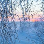В Тверскую область идет мороз