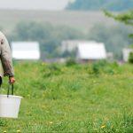 «SOS!»: в деревне под Торжком старики остались без питьевой воды