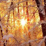 В Тверской области похолодает до минус пятнадцати