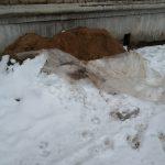 В Кимрах коммунальщики наложили кучи прямо к стенам домов