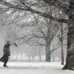 Главное управление МЧС России по Тверской области предупредило жителей региона о сильном ветре в ближайшие два дня